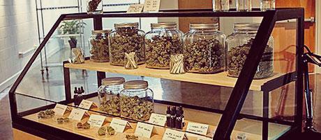 mostrador_cannabisclub_marihuana